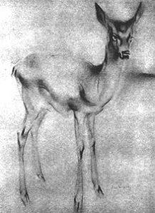 Рисунок «Олененок» Ханса ван Меегерена