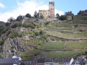 Замки и виноградники на берегах Рейна