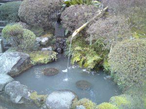 Пруд в саду Хококудзи