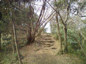 Дорога на пути к пещере Дзени-арай