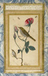 18. Соловей и роза, персидская миниатюра