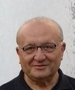 Миша Бошерницан, 2017